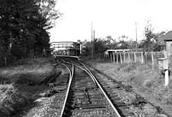 Cranleigh Station looking West - early 1960's