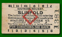 Platform Ticket - Slinfold Station