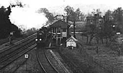 Peasmarsh Junction in the early 1900's - looking North